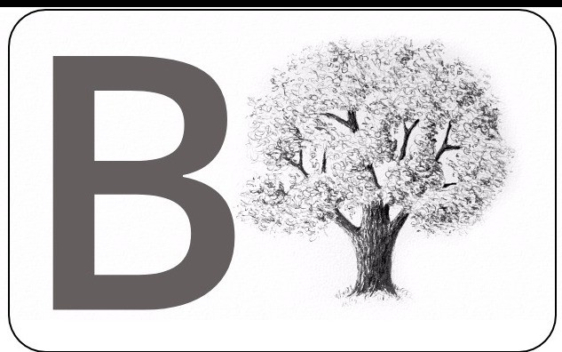 QnA VBage SQLite Database B-tree Indexing