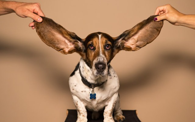 How Effective Listening Can Make You A Better Leader