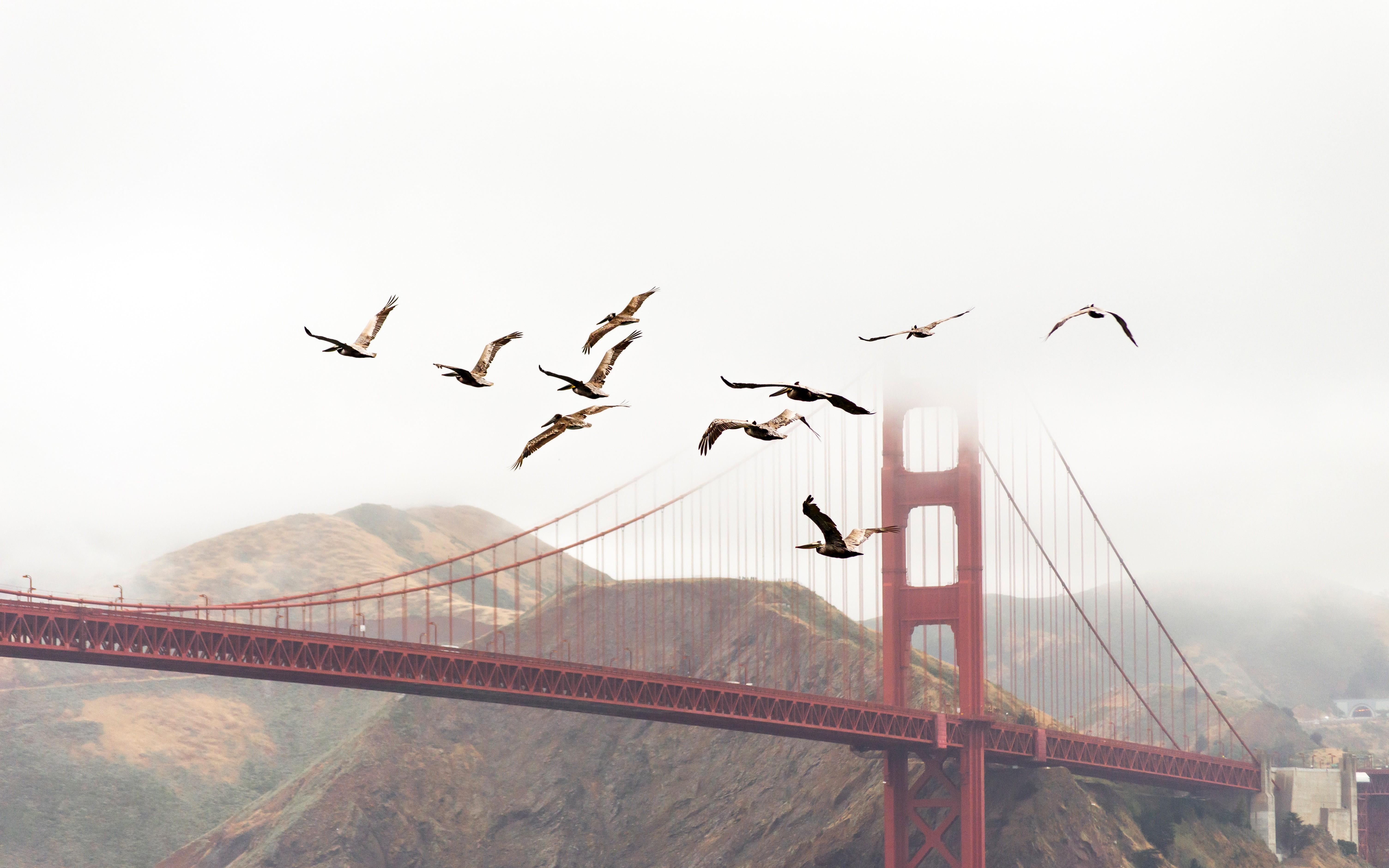 Why We Moved From NoSQL MongoDB to PostgreSQL - DZone Database