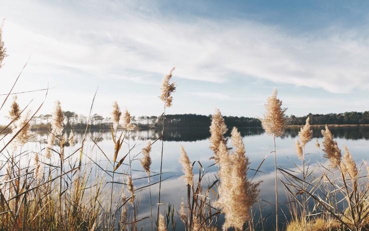 Data Virtualization — The Evolution of the Data Lake
