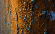 Discovering Rust