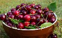 Antipattern of the Month: Cherry Picking